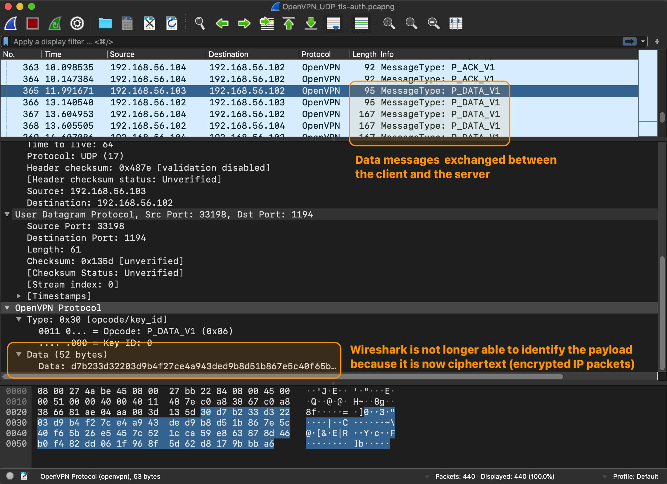 Wireshark capture: OpenVPN sending data